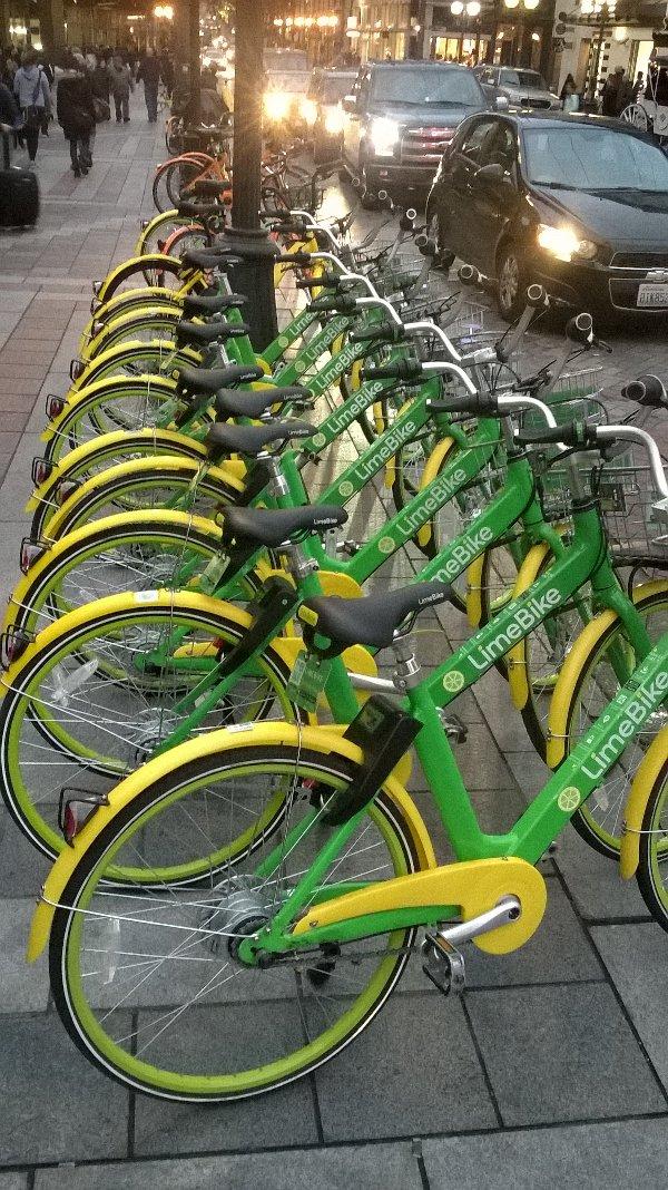 Row of green rental bikes